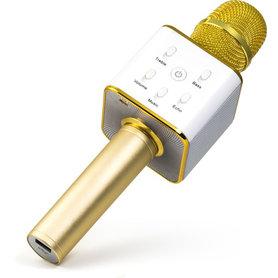 karaoke microfoon goud