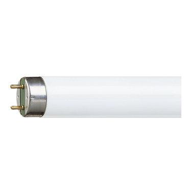 TL-D buis 15W Ø28mm 45cm kleur 840
